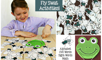 Fly Swat Feature.001